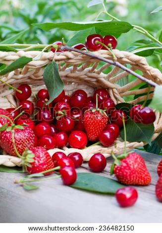 berries in a wicker basket - stock photo