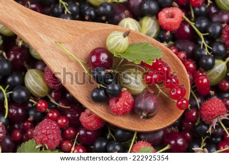 Berries in a wooden spoon on berries background. Close-up. (Black Currant; Red Currant; Cherry; Gooseberry; Raspberry). - stock photo