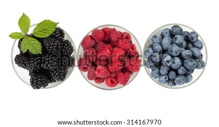 Berries. Isolated on white background - stock photo