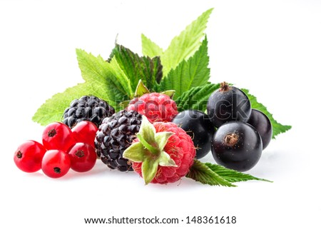 Berries on a white background - stock photo