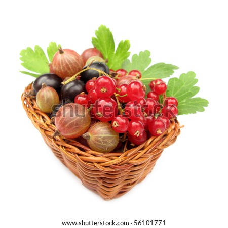 Berries redcurrants gooseberries blackcurrants wild fruits in woven basket