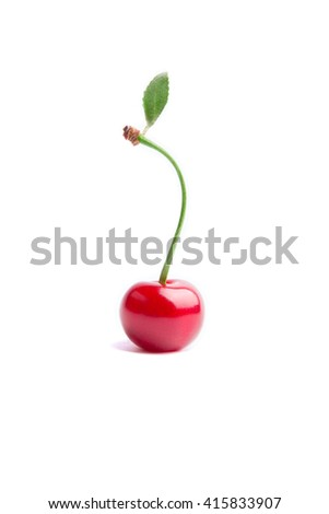 Berry Cherry with leaf on a white background