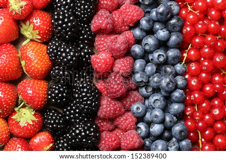 Berry fruits like strawberries, blueberries, red currants, raspberries and blackberries in a row - stock photo