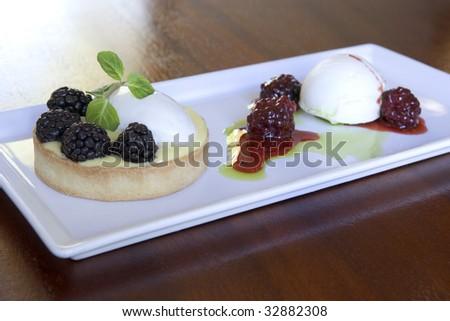 Berry Tart - stock photo