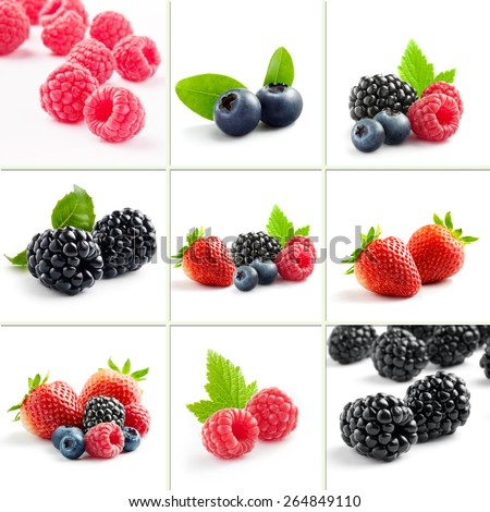 berry theme  mix composed of different images - stock photo