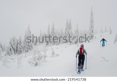 BESKIDY,POLAND - February 15,2013 - Two people snowshoe through snowy forest