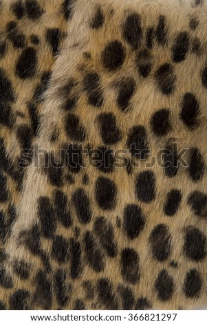 best animal fur texture detail