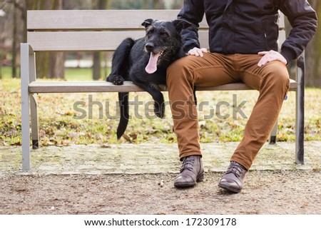 Best friends: Young man sitting with his dog on a bench in the park - stock photo
