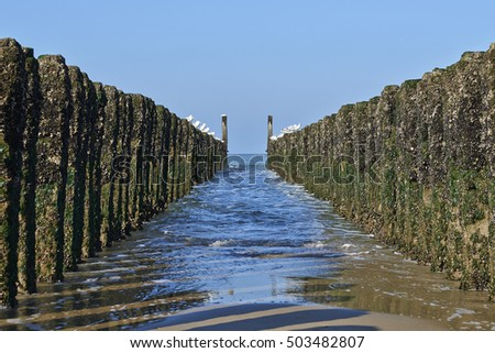 Between the two rows of poles of the breakwater against clear blue sky