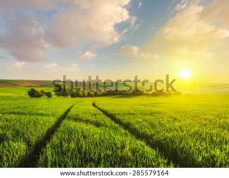 Beuatiful sunset in fields of Moravia, Czech Republic - stock photo