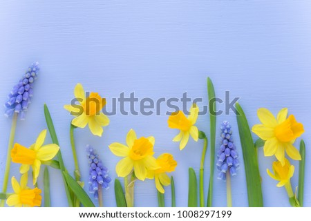 stock-photo-beutiful-spring-banner-with-