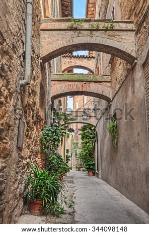Bevagna, Perugia, Umbria, Italy: picturesque narrow alley with ancient building, arch, underpass, plants and flowers