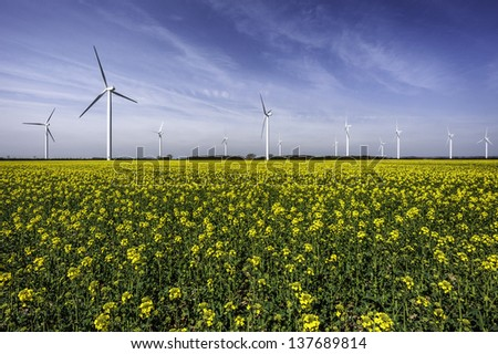 Beverley, Yorkshire, UK. Wind turbines in a field of oil seed rape on a fine spring morning near the market town of Beverley, Yorkshire, UK.