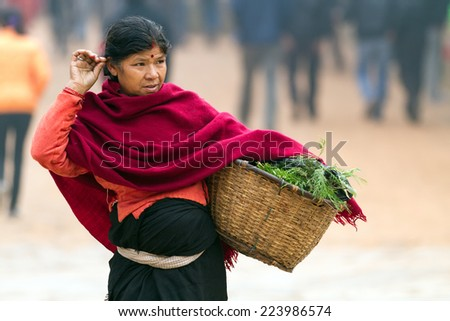 BHAKTAPUR, NEPAL, NOVEMBER 27, 2010: A senior woman is carrying her basket containing fresh vegetables and herbs from the local market in Bhaktapur, Nepal - stock photo