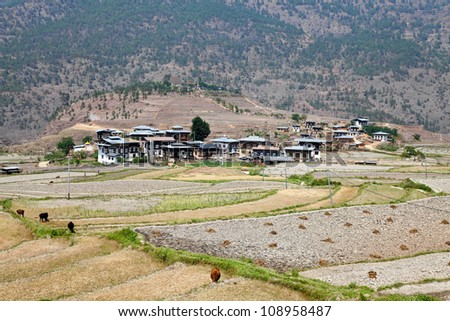 bhutanese village at punakha with chimi lhakhang temple in the background