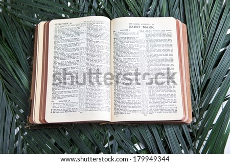 Bible with Palms