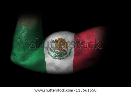 Biceps of Mexico - Flag of Mexico painted on flexed biceps - stock photo