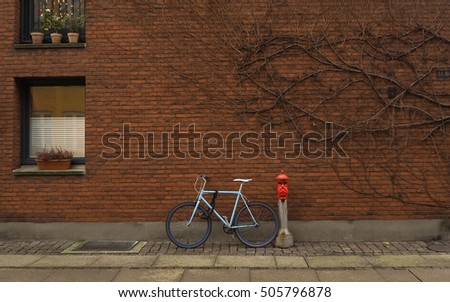 Bicycle and branching tree on the brick wall, concept of slowlife