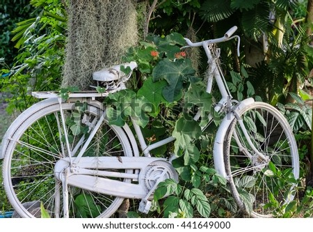 Bicycle decorated in garden