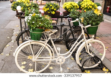 bicycle detail with flowers