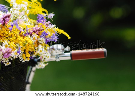 bicycle handle and flowers on a blurred green background - stock photo