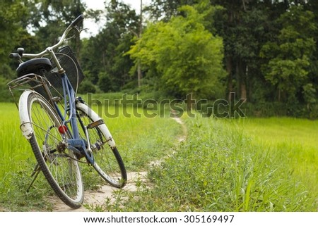 bicycle on the nature way beautiful view - lush