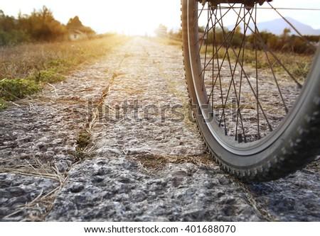 Bicycle wheel  - stock photo