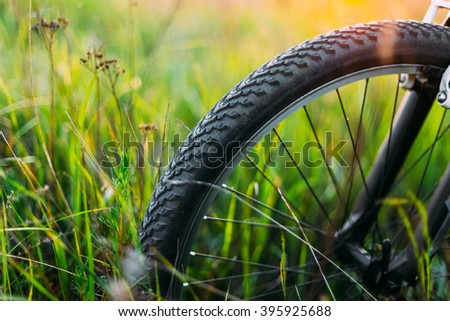 Bicycle Wheel In Summer Green Grass Meadow Field. Close Up Detail. Sunset Sunrise Time. Sunlight - stock photo