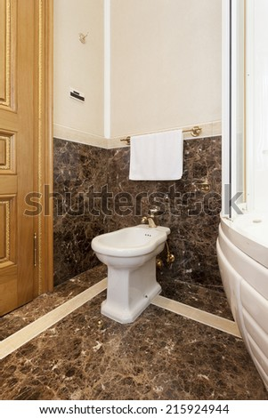 Bidet in luxury bathroom interior
