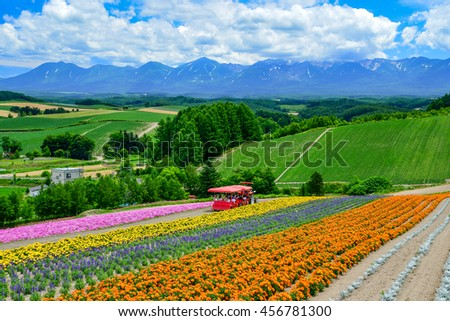 BIEI, JAPAN-JULY 22: Colorful flower field at Shikisai-no-oka, Biei, Japan on July 22, 2013. This is the beautiful farm for flower blooming scenic during summer of Hokkaido.