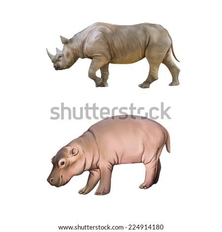 Big african Rhino, baby hippopotamus isolated on a white background - stock photo
