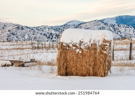 Big bale of hay with a mountain background on a winter day - stock photo