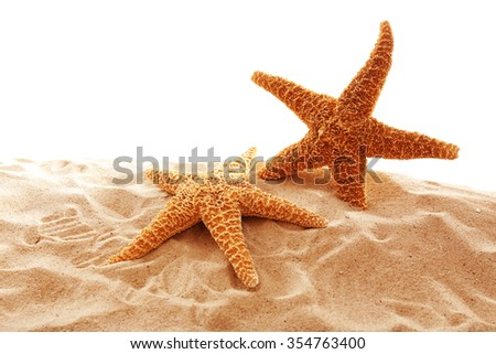 Big beautiful starfishes on sand against white background