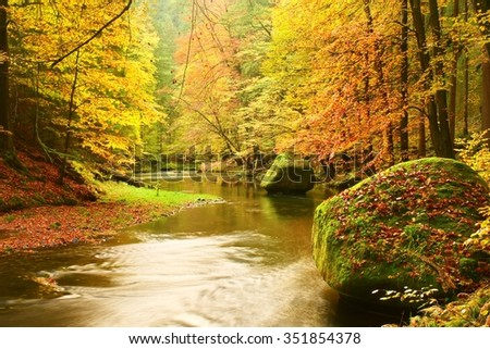 Big boulders with fallen leaves. Autumn mountain river banks. Gravel and fresh green mossy boulders on river banks covered with colorful leaves from beeches, maples and birches.   - stock photo