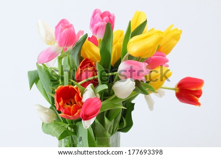 big bouquet of colorful tulips