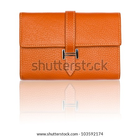 Big Brown purse with reflection on white - stock photo