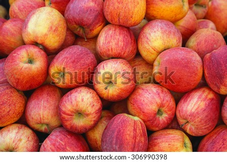 Big Bunch of Idared Red Apples - stock photo