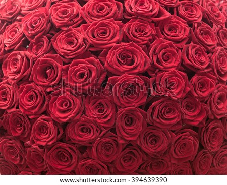 Big bunch of red roses