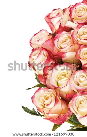 Big bunch of roses, isolated. With place for your text - stock photo