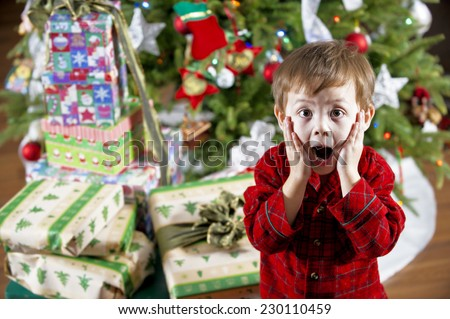 big christmas surprise / the young lad is astonished / by all of the gifts