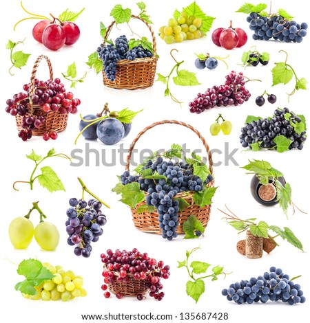 Big Collection of grapes isolated on white background - stock photo