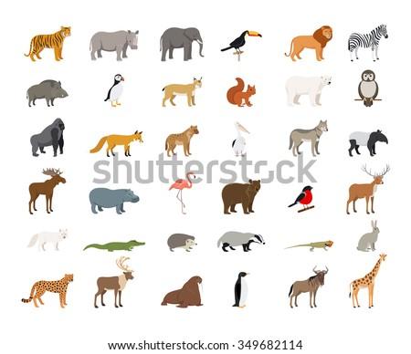 Big Collection of Wild Animals - stock photo