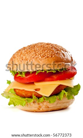 Big colorful hamburger isolated on white - stock photo