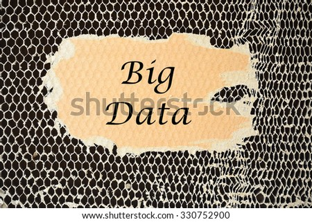 Big Data on paper torn - stock photo