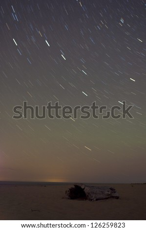 Big dipper and milky way in long exposure on beach with driftwood in foreground