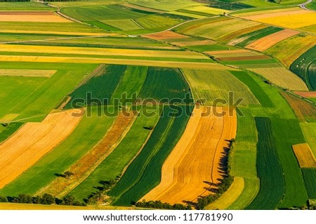 Big field ready to harvest aerial view - stock photo