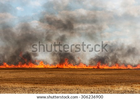 big flames in an harvested field catching fire - stock photo