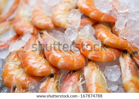 Big fresh shrimp in the white plate fot dinner, seafood