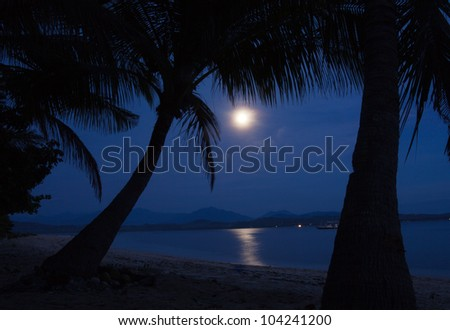 Big full bright moon lighting the beach - stock photo