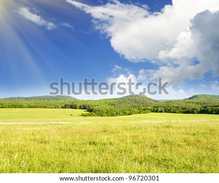Big green mountain meadow. Nature composition.